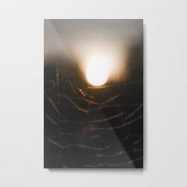 Through the web II Metal Print