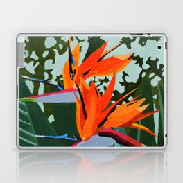 Strelitzia - Bird of Paradise Laptop & iPad Skin