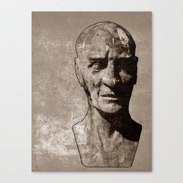 cacophony Canvas Print