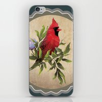 cardinal iPhone & iPod Skins featuring Cardinal by Ludovic Jacqz