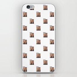 New York, NY Brownstone iPhone Skin