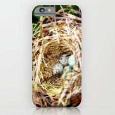 Birds :: Our Nest iPhone 6s Slim Case