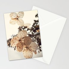 Lacy Nature Stationery Cards