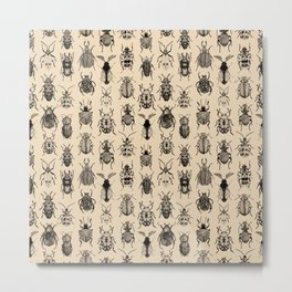 Old-fashioned Bugs Metal Print