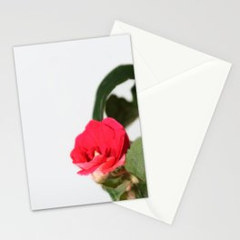 small red flower Stationery Cards