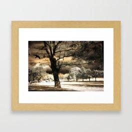 Surreal Gothic Infrared Raven Tree Landscape Nature Framed Art Print