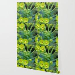 Little Green Flowers Wallpaper