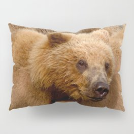 Brown Bear Grizzly Pillow Sham