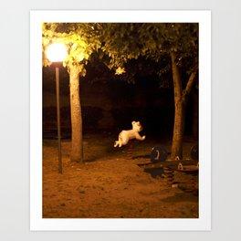Il Parco Art Print