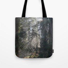 Illuminated Spruce Tote Bag
