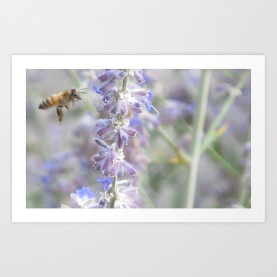 Pollenate Art Print