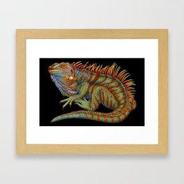 Iguana 2 Framed Art Print