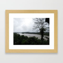 Ecuador River Framed Art Print