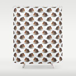 Satisfied robin Shower Curtain