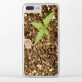 Cannabis Sprout Clear iPhone Case