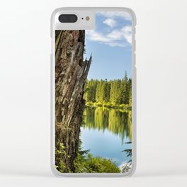 Stump Beside Clear Lake Clear iPhone Case
