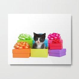 Kitten Birthday Surprise Metal Print