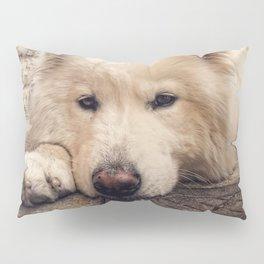 Summer Rest Pillow Sham