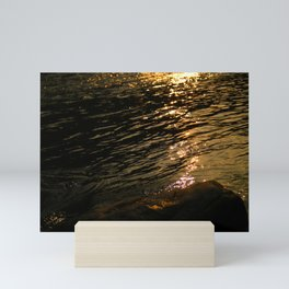 The brilliant river in the sun Mini Art Print
