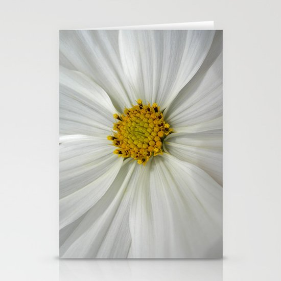 white cosmos III Stationery Cards
