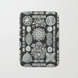 Ernst Haeckel - Scientific Illustration - Diatomea Bath Mat