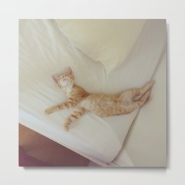 Dancing Kitten Metal Print