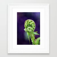 fern Framed Art Prints featuring Fern by LoRo  Art & Pictures