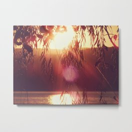 Flare Metal Print