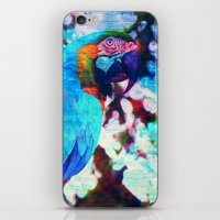 parrot iPhone & iPod Skins featuring Parrot by haroulita