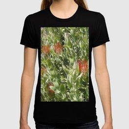 Proteas T-shirt