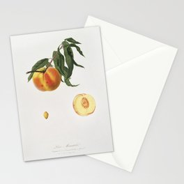Peach (Prunus persica) from Pomona Italiana (1817 - 1839) by Giorgio Gallesio (1772-1839) Stationery Cards