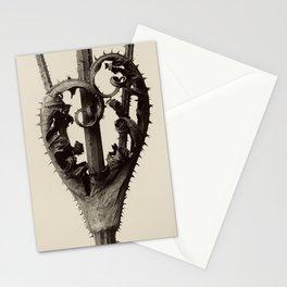 Karl Blossfeldt - Dipsacus laciniatus Stationery Cards