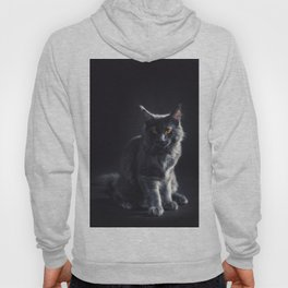 Maine Coon Cat Hoody