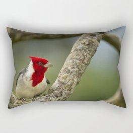 Red Crested Cardinal Rectangular Pillow