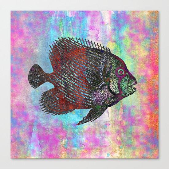 Fish Q Canvas Print