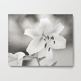 Black and White Lily Flower Photography, Neutral Grey Lilies, Gray Nature Spring Photo Metal Print