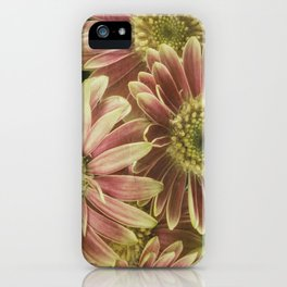 little gerberas iPhone Case