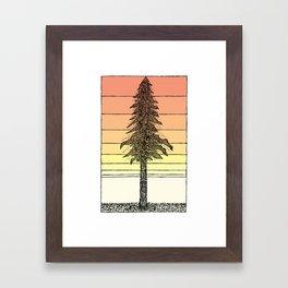 Coastal Redwood Sunset Sketch Framed Art Print