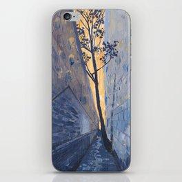 Hidden Alley iPhone Skin
