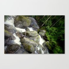 From the top of the Waterfall Canvas Print