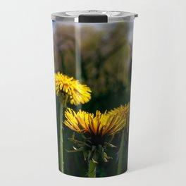 Concept flora : Dandelions in a field Travel Mug