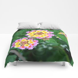 Southern blossoms Comforters