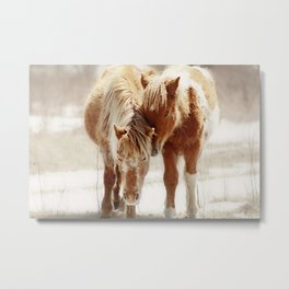 Love Connection Between Two Horses Metal Print