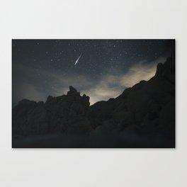 Joshua Tree Night Sky Canvas Print
