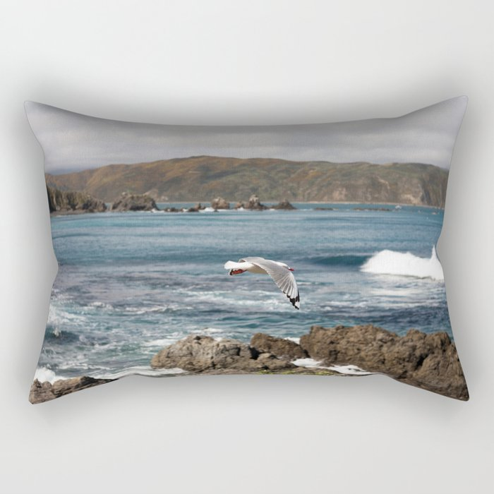 Flyby Rectangular Pillow