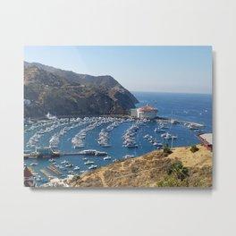 Santa Catalina Island Metal Print