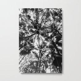 Palm tree stars Metal Print