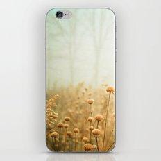 Daybreak in the Meadow iPhone Skin
