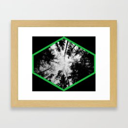 Grey forest Framed Art Print