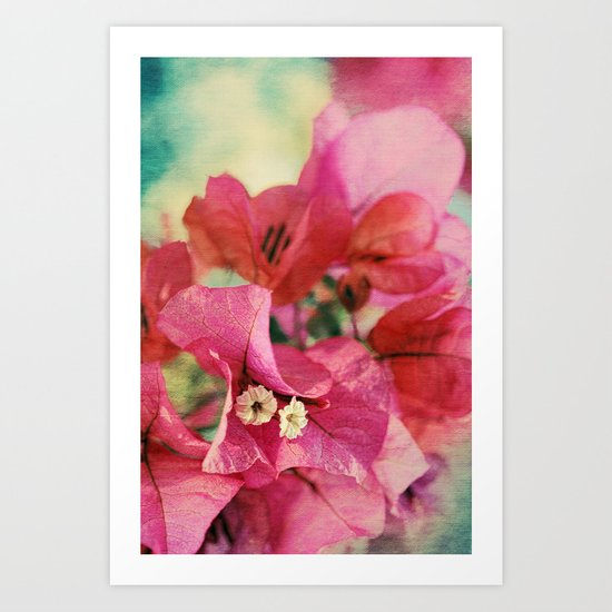 Vintage Bougainvillea Flowers in pink & green with textures Art Print
